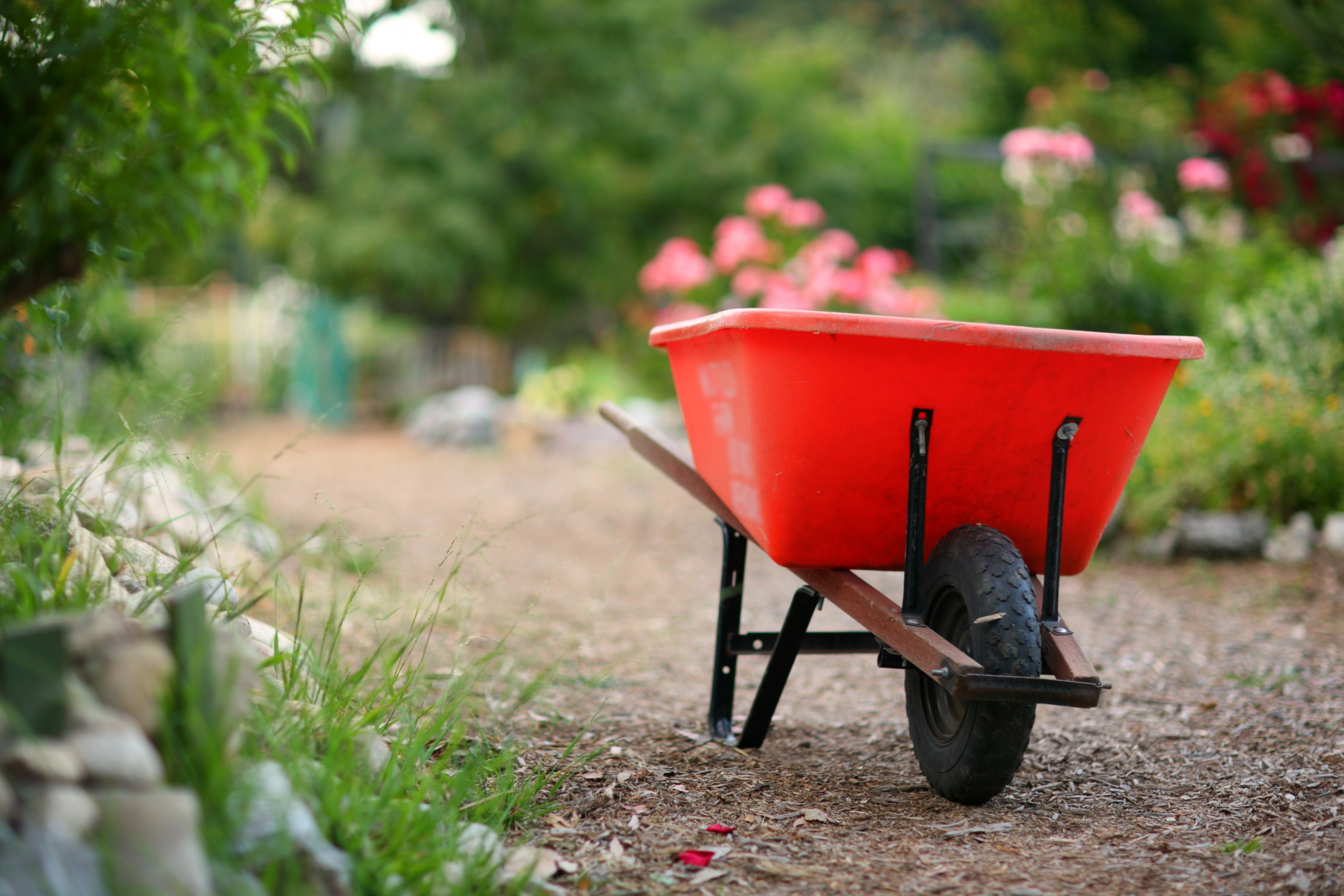 7 tips to spring cleaning your yard Yard and garden