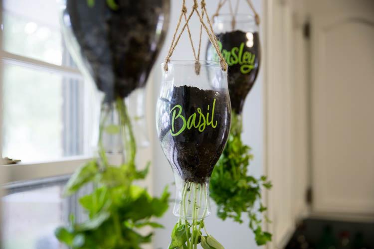 5 Ideas For Your Indoor Herb Garden